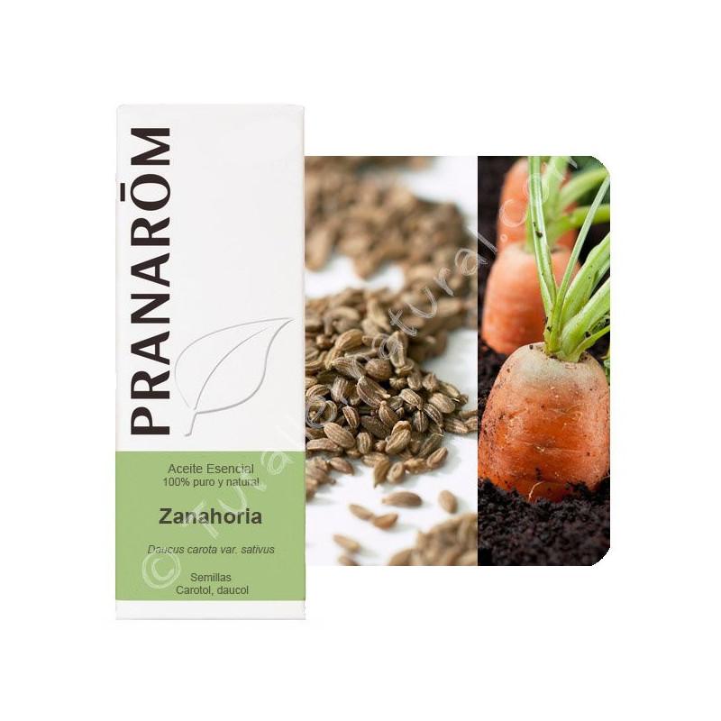 Aceite esencial de Zanahoria Pranarom