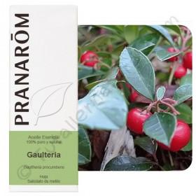 Aceite esencial de gaulteria - wintergreen