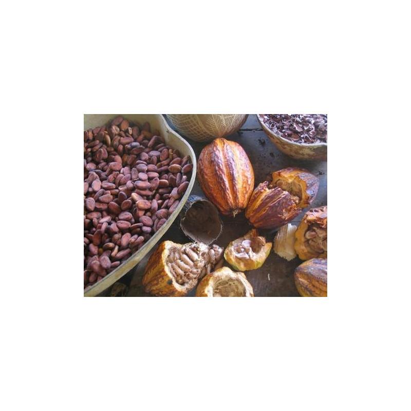 Manteca de Cacao BIO 100 y 250 gr