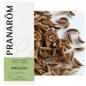 Aceite esencial de alcaravea 10 ml.