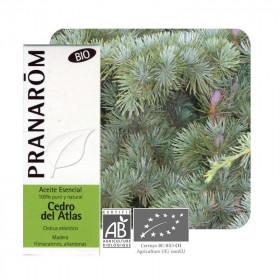 Aceite esencial de cedro del atlas BIO 10 ml.
