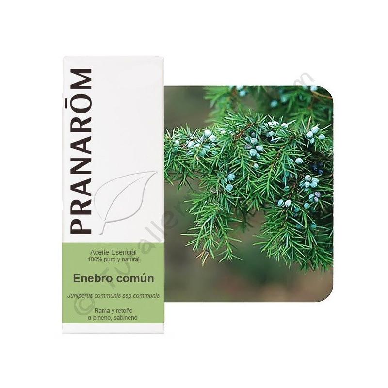 Enebro común Pranarom