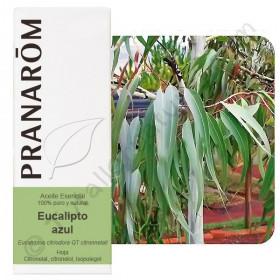 Aceite esencial de eucalipto azul o citriodora 10, 30 y 100ml.