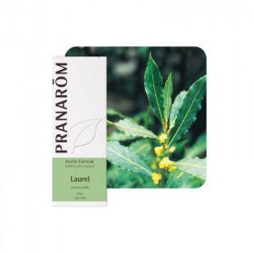 Aceite Esencial de Laurel 5 ml. y 30 ml.