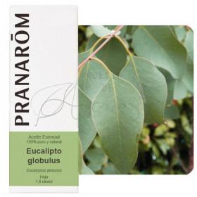 Aceite esencial de eucalipto globulus 10 ml.