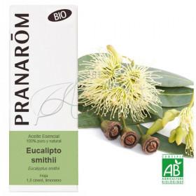 Aceite esencial de eucalipto smithii BIO 10 ml.