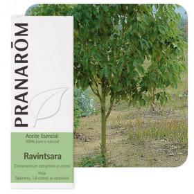 Aceite Esencial de Ravintsara 10 y 100 ml.