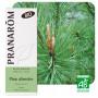Aceite Esencial de Pino silvestre BIO 10 ml.