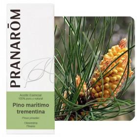 Aceite esencial de Pino Marítimo o trementina 10 ml.
