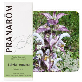 Aceite esencial de salvia romana, sclarea o esclarea 10 ml.