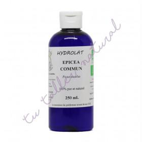Hidrolato de abeto común silvestre BIO 250 ml. - Destillerie Les Essentielles
