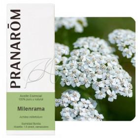 Aceite Esencial de Milenrama 5 ml.