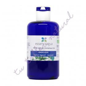 Hidrolato de angélica (raíz) BIO 250 ml.