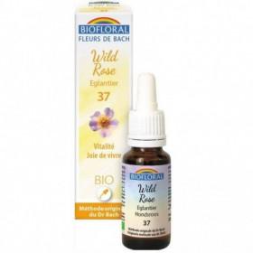 Wild rose BIO 20 ml. - Biofloral