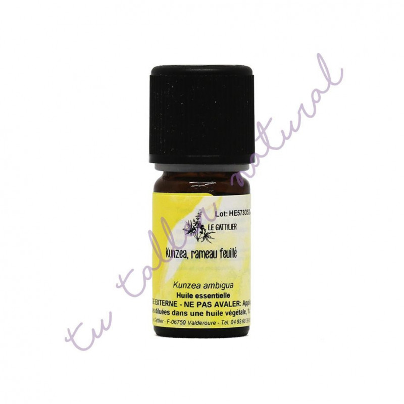 Aceite esencial de kunzea 5 ml. - Le Gattilier